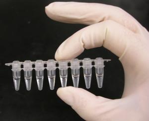 PCR_tubes